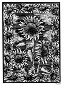Scratchboard Illustration